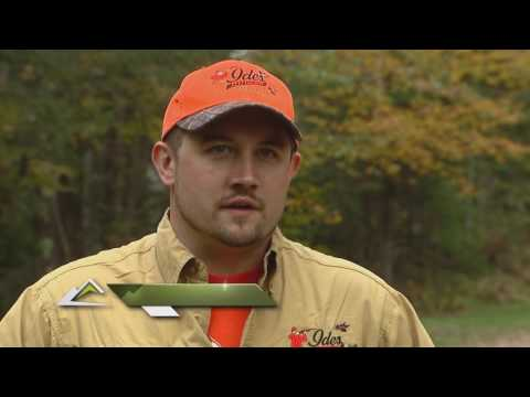 The Flush - Wisconsin Ruffed Grouse - 2016 Episode #2