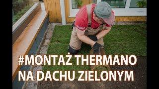 Instrukcja montażu Thermano dwuwarstwowo na dachu zielonym ekstensywnym