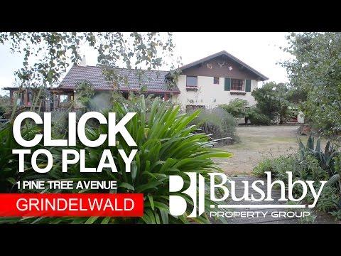 Andrew Macdonald - 1 Pine Tree Avenue, Grindelwald