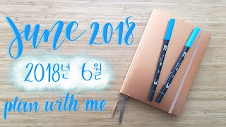 Plan With Me | June 2018