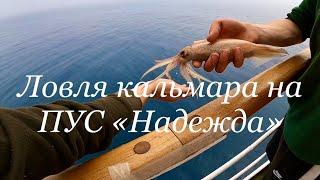 Убойная рыбалка на кальмара днём в Приморском крае