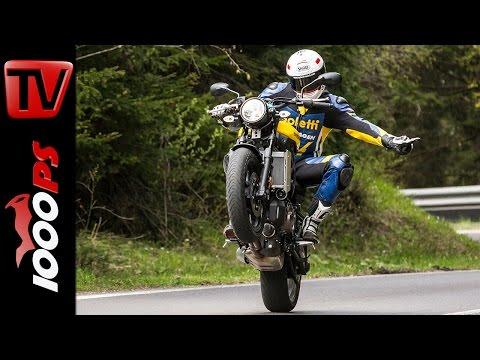 Yamaha XSR700 Test 2016 | Motorrad Quartett | Action, Onboard, Details
