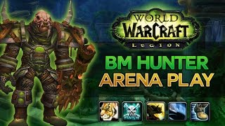 bm hunter arena commentary legion pvp 7 0 3