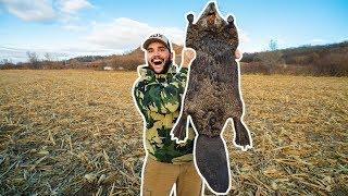 i-finally-trapped-the-giant-beaver-at-my-farm
