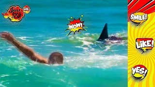 SHARK ATTACK BEACH PRANK | Best funny prank compilation