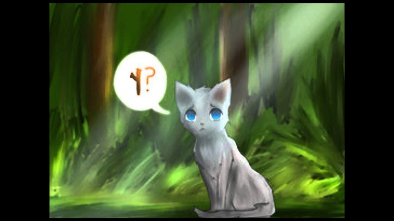 jayfeather and his stick rant youtube