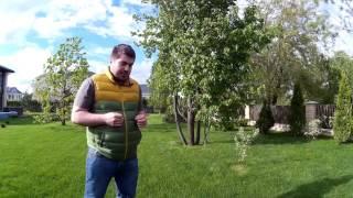 видео уход за рулонным газоном