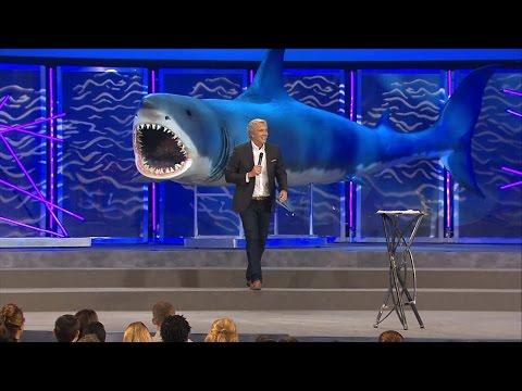 Shark Weak: Park 3 - Surviving an Attack