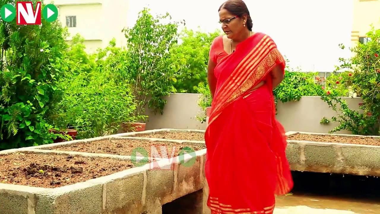 How to make a terrace garden - Terrace Gardening How To Start A Raised Bed Garden Padmaja Youtube