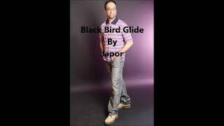 Watch Japor Black Bird Glide video