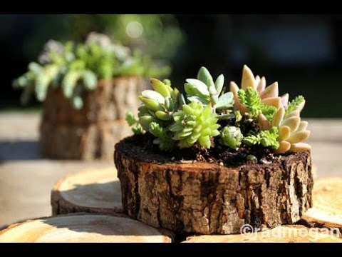 How To Make a Stump Planter - YouTube