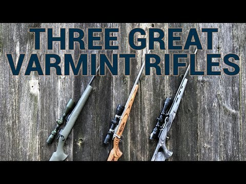 Three Great Varmint Rifles