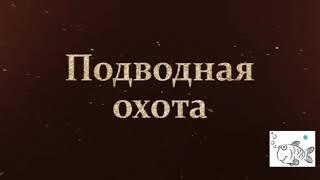Подводная охота Волгоградская область