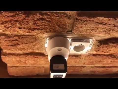 Alexa and TP Link KASA smart plug (HS100) set-up for design light