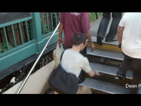 Subway Riders Caught on Video Tripping Over Stairs is Viral