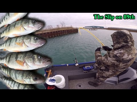 Chicago Perch Fishing The Champion! (The Slip On 89th Street 12.07.2019)