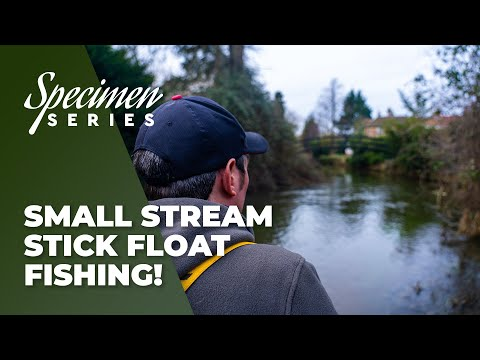 Small Stream Stick Float Fishing!