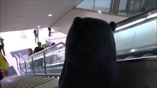 2014年10月26日 阿蘇くまもと空港.