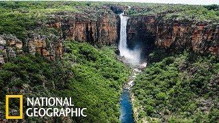 Какаду - древняя природа Австралии  (National Geographic)