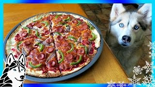 Video DIY PIZZA FOR DOGS | Dog friendly Pizza | DIY Dog Treats | Snow Dogs Snacks 66 download MP3, 3GP, MP4, WEBM, AVI, FLV September 2017
