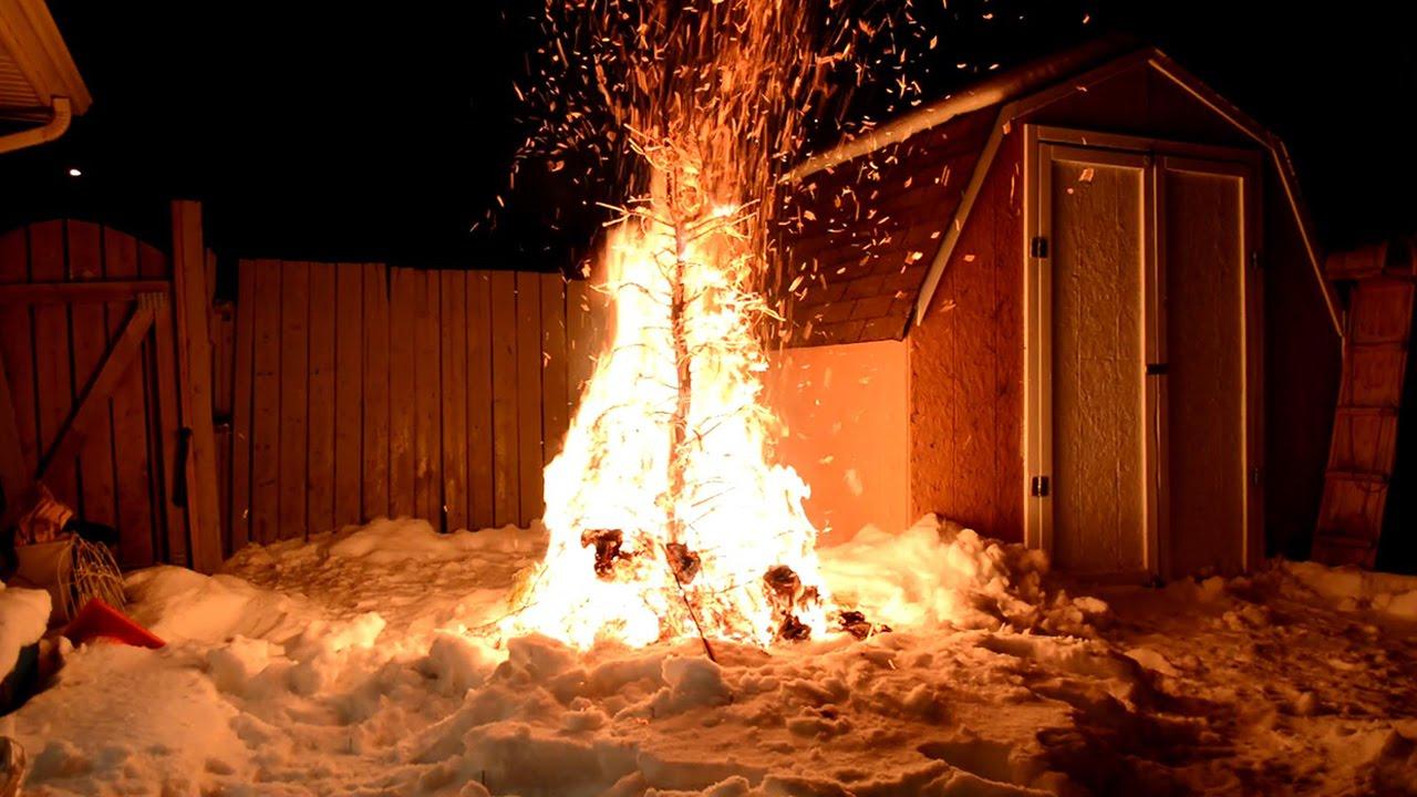 Burning Christmas Tree.Burning A Christmas Tree