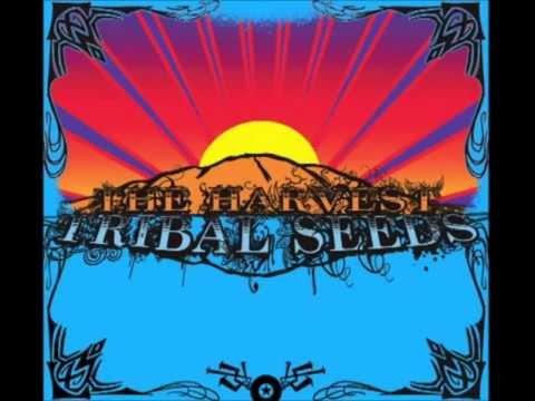 Tribal Seeds - The Harvest