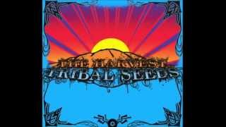 Tribal Seeds - The Harvest