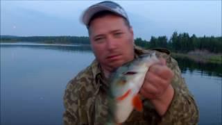 Какой кайф - отпущено 25 шт, изъято 22шт - Аргази летом. Рыбалка на крупного окуня и щуку.