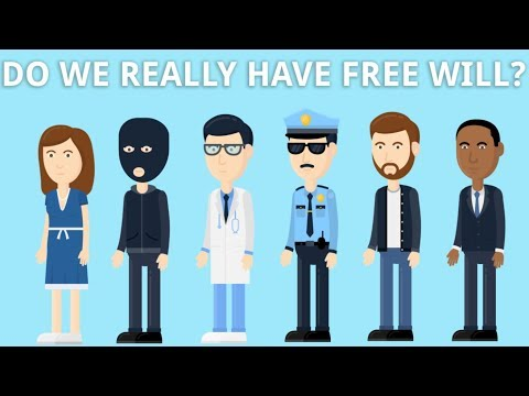 Do We Really Have Free Will?