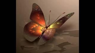 Гиф -бабочка