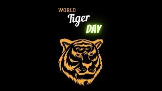 World  tiger day  jiya vanya super sisters