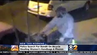 police search for bandit on bicycle stealing womens handbags phones