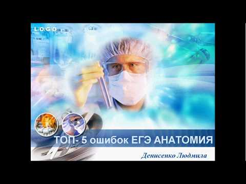Видео: Топ-5 ошибок по анатомии в ЕГЭ по биологии
