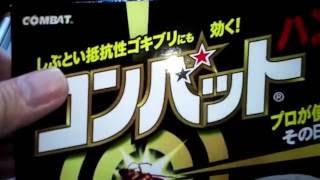 【実験】コンバットハンターの実力