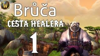 Brůča: cesta healera (WoW) 1: Pandí začátky