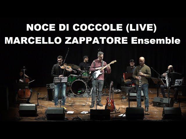 NOCE DI COCCOLE (LIVE) - MARCELLO ZAPPATORE Ensemble
