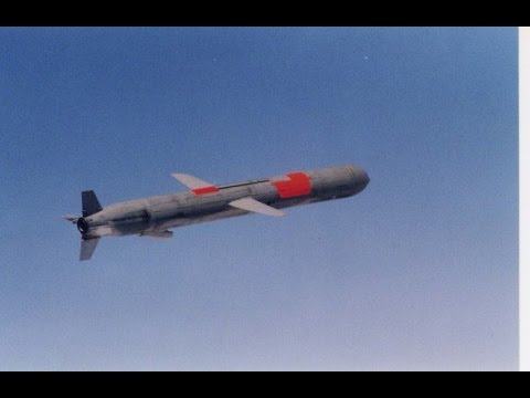 Documentary : cruise missile