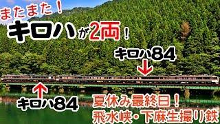 【またまた!キロハが2両連結の特急ひだ!】飛水峡と下麻生で夏休み最終日撮り鉄!