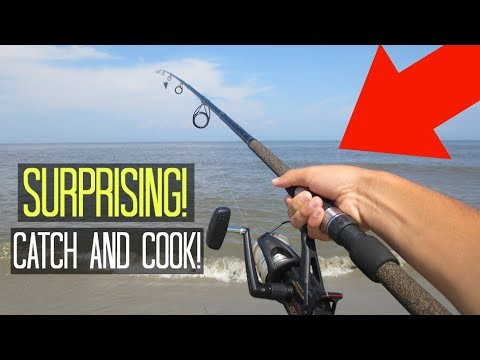 Surf fishing on the beach catch and cook surprising for Catch and cook fish