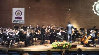 Max Bruch -  Concerto for Clarinet, Viola, and Orchestra in E minor, Op. 88