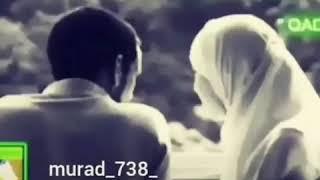 Haci Şahinden Qadinlar haqqinda.