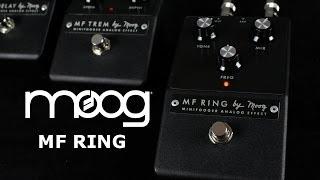 Moog Minifooger Ring Modulator