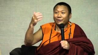 Tulku Dakpa Rinpočhe - Sloboda od negatívnych emócii