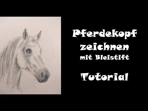 Pferd zeichnen lernen mit Bleistift: Pferdekopf [Teil 1 ohne Farbe]