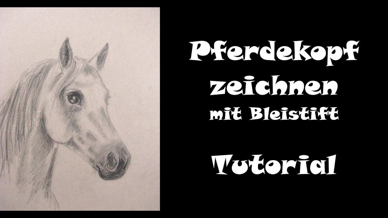 Pferd Zeichnen Lernen Mit Bleistift Pferdekopf Teil 1 Ohne Farbe