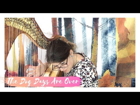 Dog Days Are Over - Florence and the Machine - Harp Cover - SAM MACADAM
