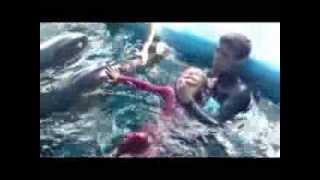 Дельфинотерапия в Одессе. Дельфинарий Немо