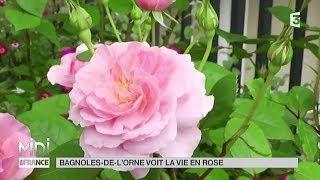 VU D'ICI : Bagnoles-de-l'Orne voit la vie en rose