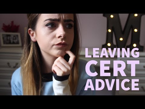 LEAVING CERT ADVICE: Surviving the Exams
