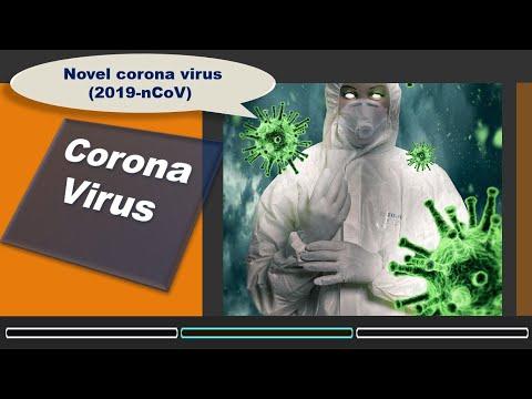 Coronavirus: 2019-nCoV: Human  Novel Coronavirus-2019